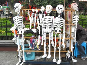 Young woman's stand at the Coyoacan plaza. She was selling papier mache skeletons.