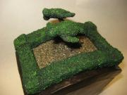 Turtle Topiary Garden Top by Richard Will
