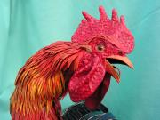 Rooster 3, head by Scylla Earls