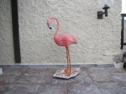 flamingo by Ruhama Peled