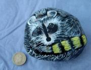Raccoon on a 'pebble' by David Osborne