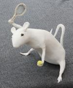 Tennis playing rat by David Osborne